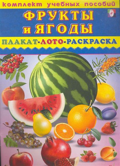 Комплект Фрукты и ягоды Плакат лото раскраска