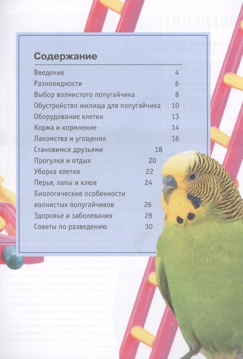 О'Нил А. Волнистые попугайчики
