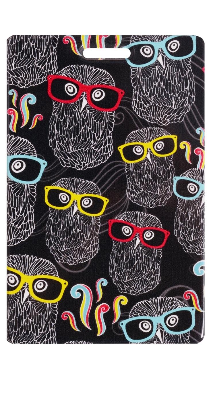 Чехол для карточек Совы в очках на черном фоне