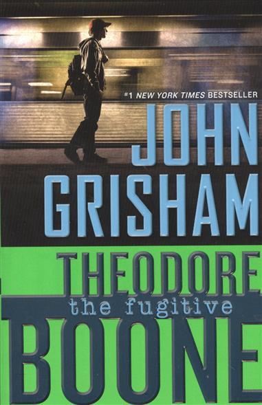 Theodore Boone. The fugitive