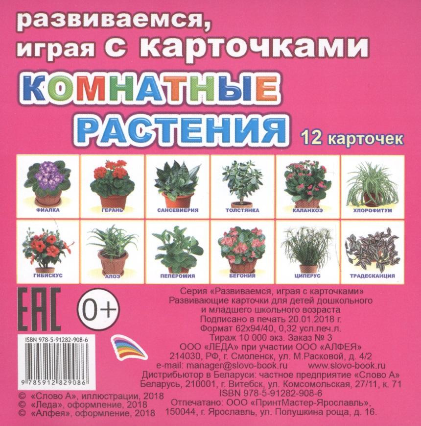 Комнатные растения ольга романова доктор на подоконнике лечебные комнатные растения isbn 978 5 9684 1672 8