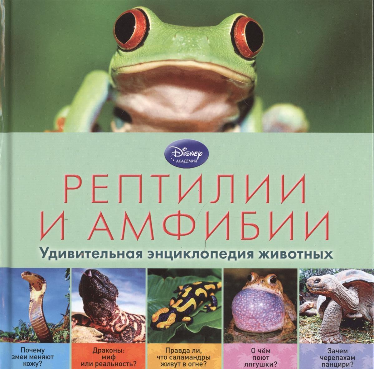 все цены на Жилинская А. (ред.) Рептилии и амфибии. Удивительная энциклопедия животных онлайн