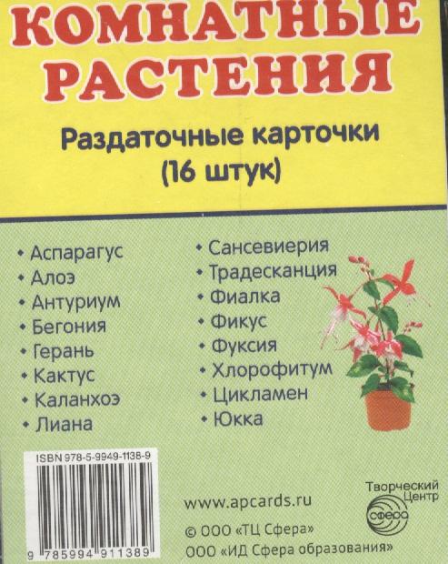 Комнатные растения. Раздаточные карточки. 16 штук nobbaro туфли комнатные