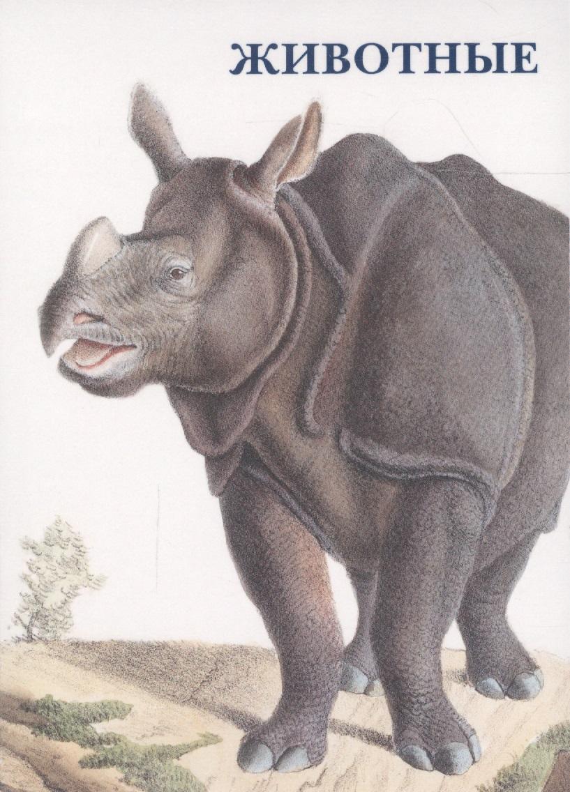 Животные. Набор открыток
