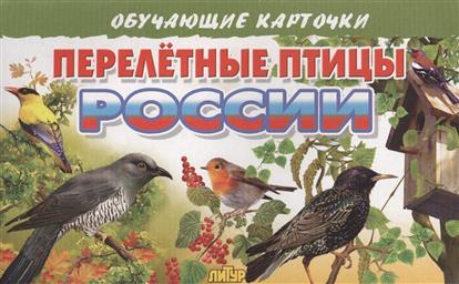 Глушкова Н. (худ.) Обучающие карточки. Перелетные птицы России цена 2016