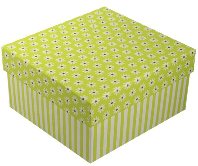 """Коробка подарочная """"Ромашки c полосками"""" салатовая, 13*13*7.5см"""