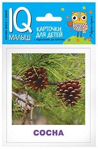 Малунова М. Деревья. Карточки для детей с подсказками для взрослых предлоги prepositions карточки для детей с подсказками для взрослых
