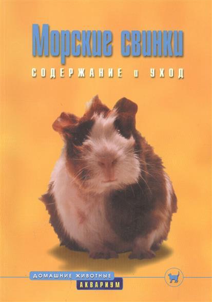 Морские свинки Содержание и уход
