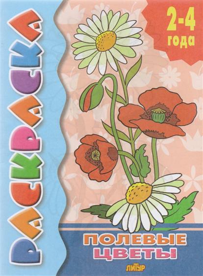 Полевые цветы. Раскраска с подсказкой