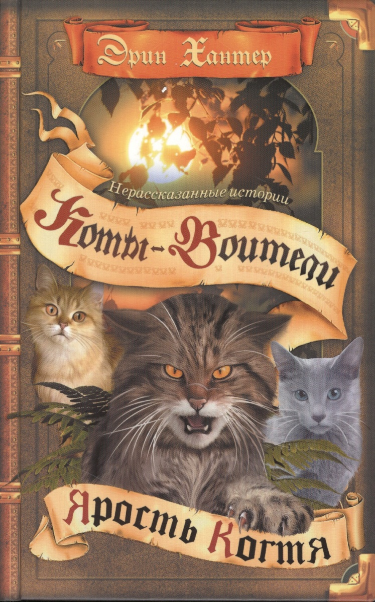 Коты воители ярость когтя книга