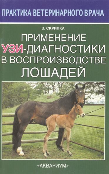 Применение УЗИ-диагностики в воспроизводстве лошадей