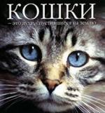 Федин С. (сост.) Кошки это духи спустившиеся на землю