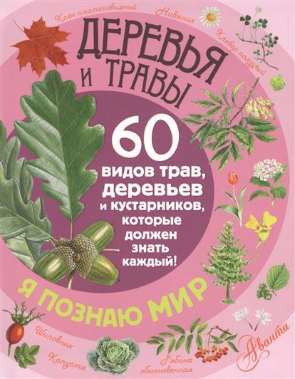 Волцит П. Деревья и травы. 60 видов трав, деревьев и кустарников, которые должен знать каждый мартин оливер гай маклональд каждый мальчик должен знать