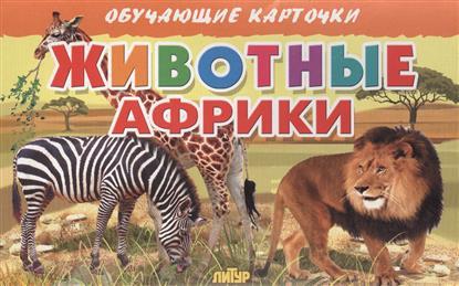 Глушкова Н. (худ.) Обучающие карточки. Животные Африки mk7 stainless steel extrusion wheel for 3d printer 2 pcs