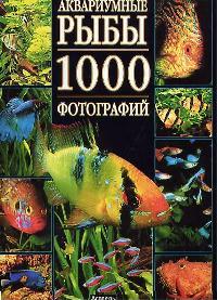 Пьенуар М.-П. Аквариумные рыбы 1000 фотографий Альбом бологова в моя большая книга о животных 1000 фотографий