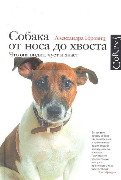 Собака от носа до хвоста Что она видит чует и знает
