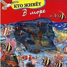 Волшебное окошко-макси Кто живет в море феникс обучающая книжка кто живет в море