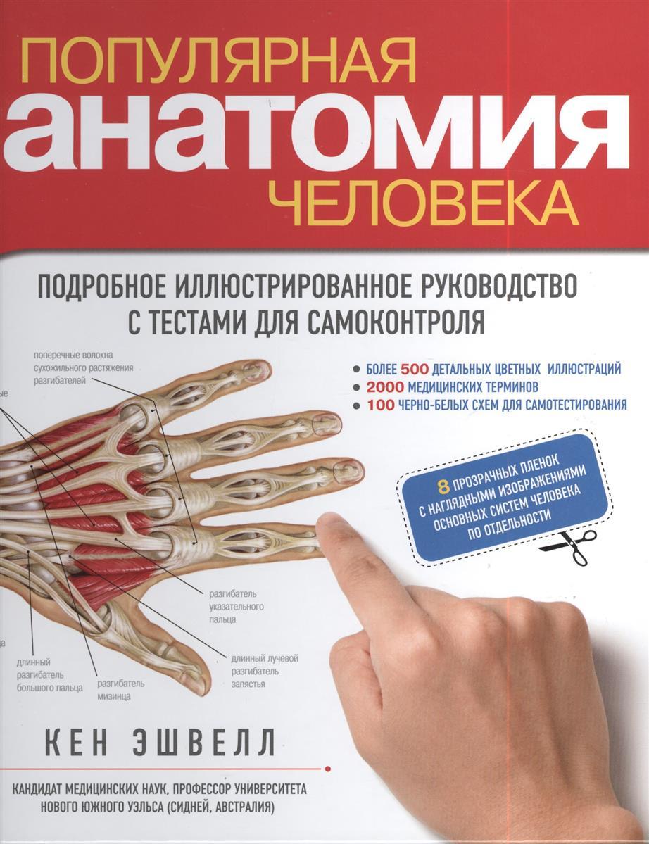 Эшвелл К. Популярная анатомия человека. Подробное иллюстрированное руководство с тестами для самоконтроля (+ 8 прозрачных пленок с наглядными изображениями основных систем человека по отдельности) ISBN: 9785699634644