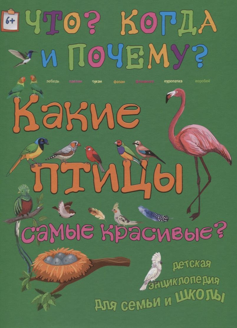 Владимиров В. Какие птицы самые красивые? владимиров в 3d boom какие птицы самые красивые