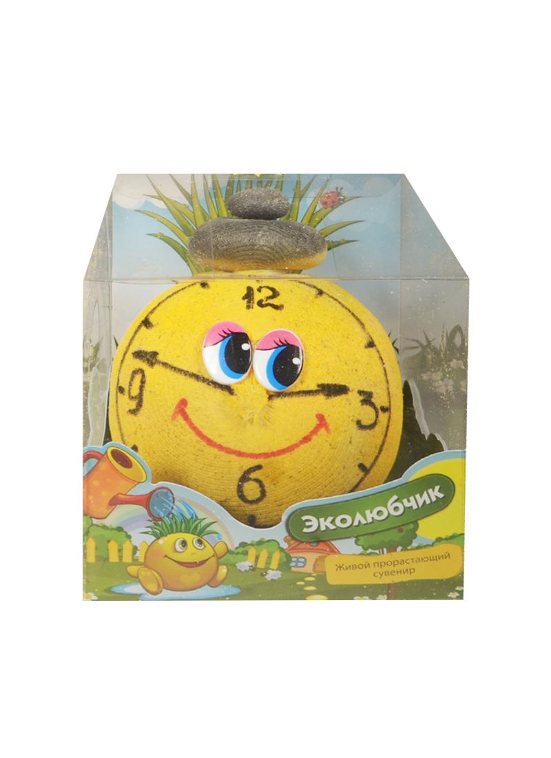 Эколюбчик Часы (12см) (упаковка) (Академия цветоводства)
