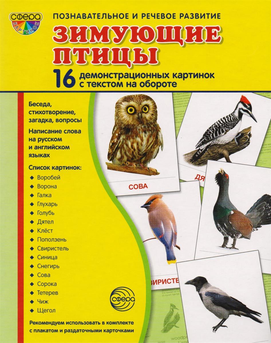 Цветкова Т. Зимующие птицы. 16 демонстративных карточек с текстом на обороте