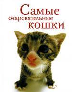 Самые очаровательные кошки