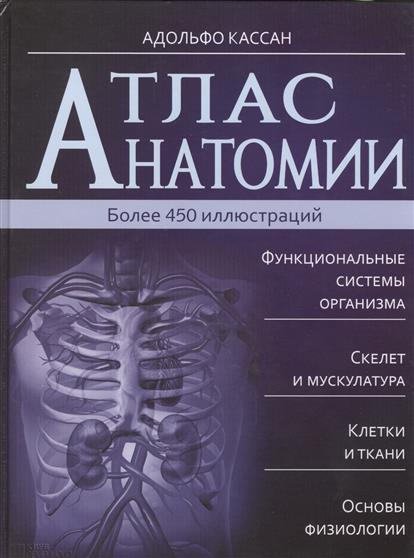 Атлас анатомии. Более 450 иллюстраций. Функциональные системы организма. Скелет и мускулатура. Клетки и ткани. Основы физиологии. 2-е издание