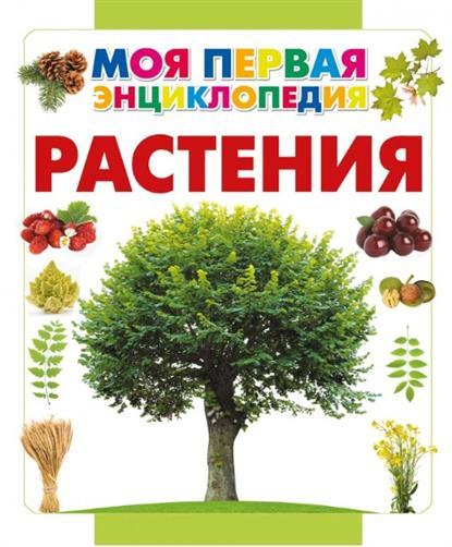 Спектор А. Растения спектор а история россии