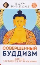 Совершенный буддизм. Жизнь, достойная подражания. Том 1