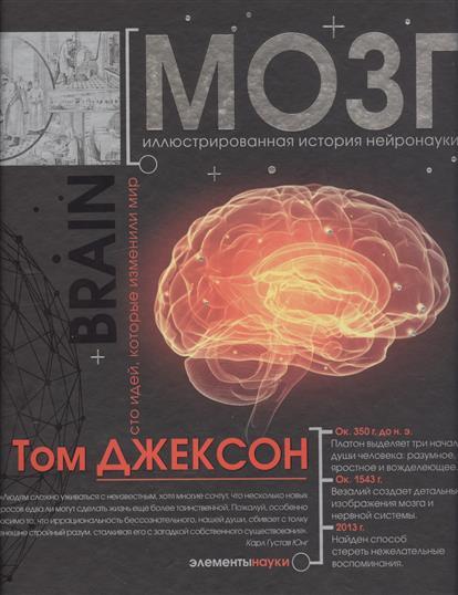 Джексон Т. Мозг. Иллюстрированная история нейронауки хилл т beatles полная иллюстрированная история