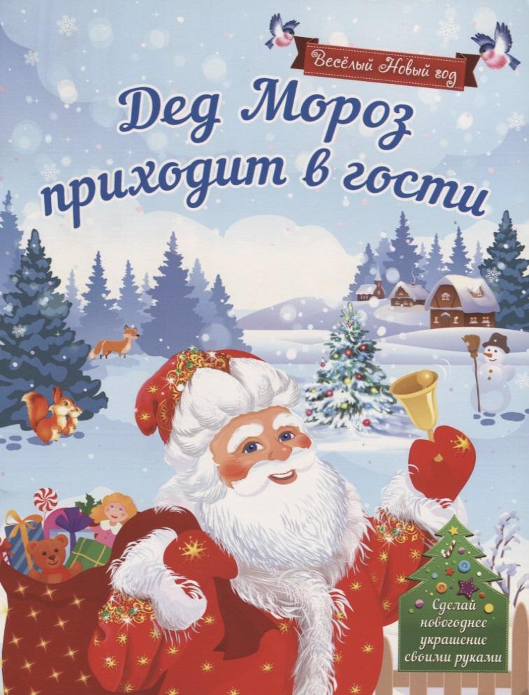 Воробьева Н. Дед Мороз приходит в гости. Сделай новогоднее украшение своими руками! украшение сделай сам ls19 diy