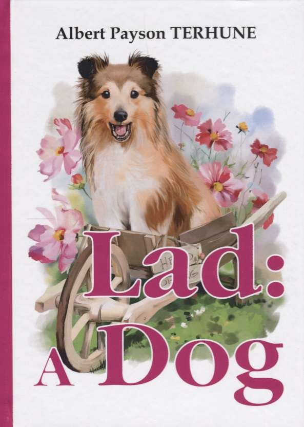 Terhune A. Lad: A Dog it8712f a hxs