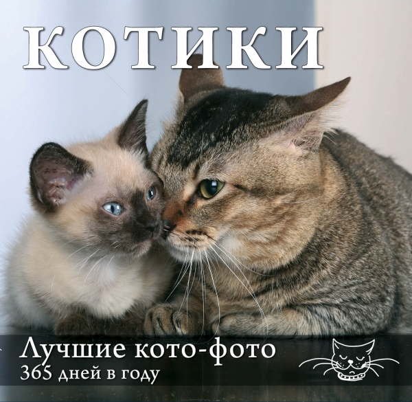 Гюнтер Е. Котики. Лучшие кото-фото 365 дней в году