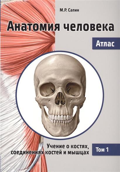 Сапин М. Анатомия человека. Атлас. Том 1. Учение о костях, соединениях костей и мышцах анатомия человека в 2 х томах том 1 cd