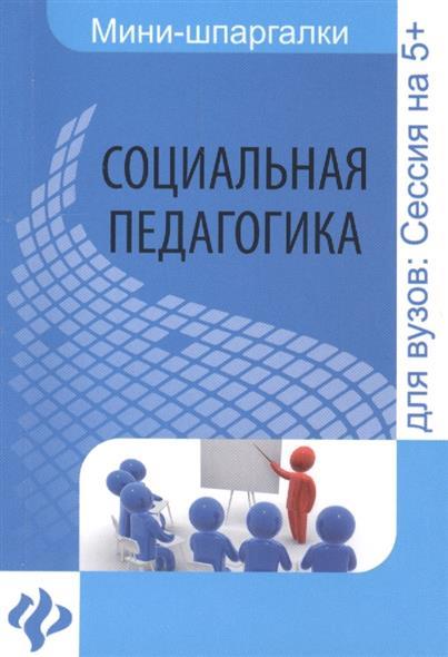 Альжев Д. Социальная педагогика. Шпаргалка. Для высшей школы