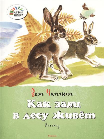 Чаплина В.: Как заяц в лесу живет. Рассказ