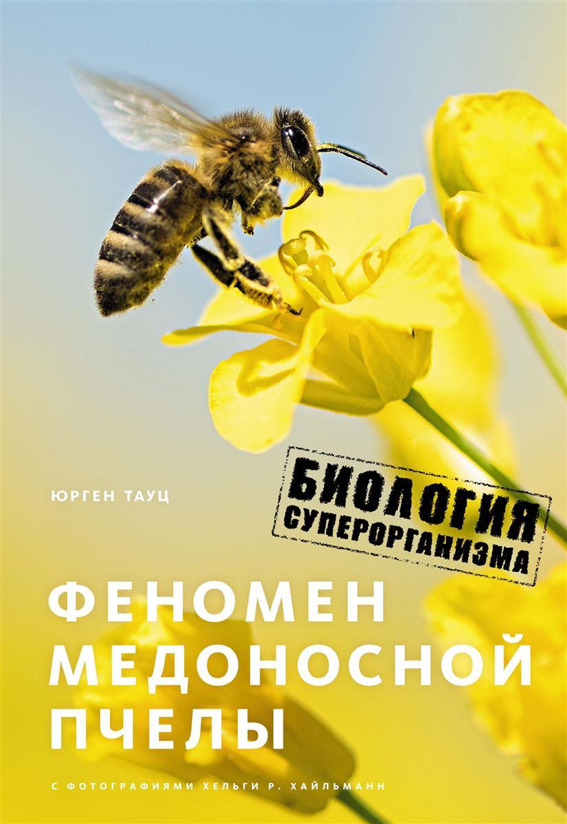 Тауц Ю. Феномен медоносной пчелы. Биология суперорганизма владимир преображенский дары медоносной пчелы лечение продуктами пчеловодства