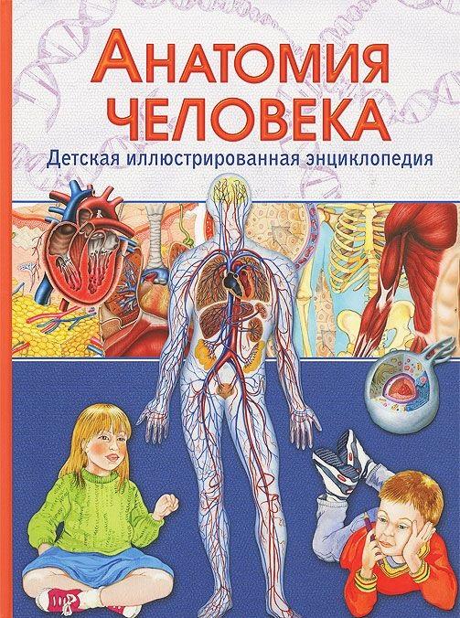Гуиди В. Анатомия человека ISBN: 9785956720585 анатомия человека универсальный справочник
