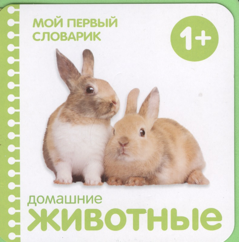 Краснушкина (ред.) Домашние животные краснушкина е ред рисуют малыши животные
