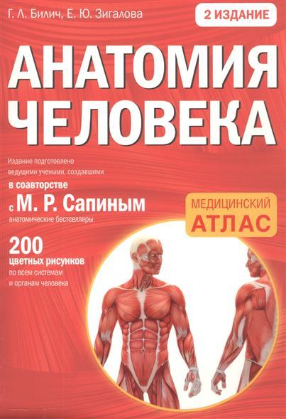 Билич Г., Зигалова Е. Анатомия человека билич г л зигалова е ю анатомия человека русско латинский атлас