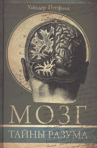 Мозг. Тайны науки