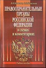 Правоохранительные органы РФ в схемах и комментариях