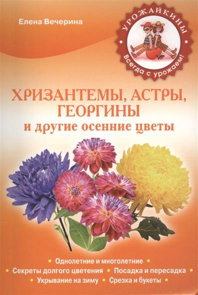 Хризантемы, астры, георгины и другие осенние цветы