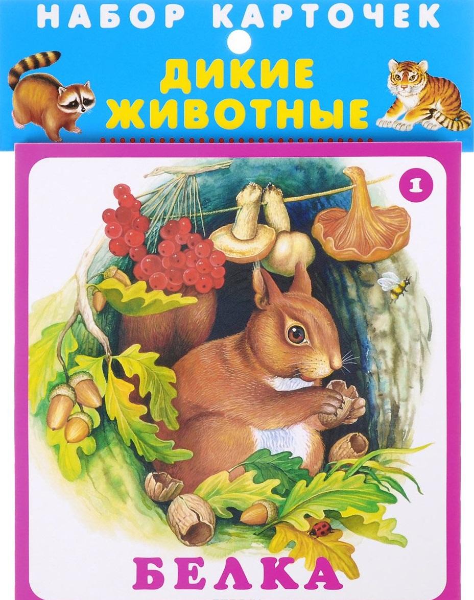 Цыганков И. (худ.) Набор карточек Дикие животные набор пазлов trefl дикие животные