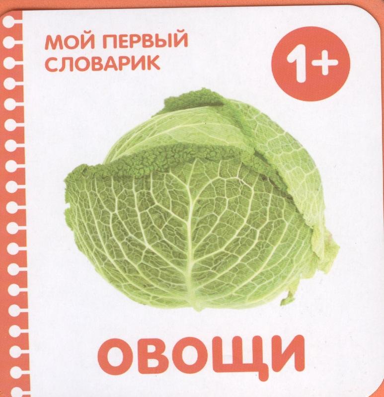Краснушкина (ред.) Овощи краснушкина е ред веселый жеребенок звуки