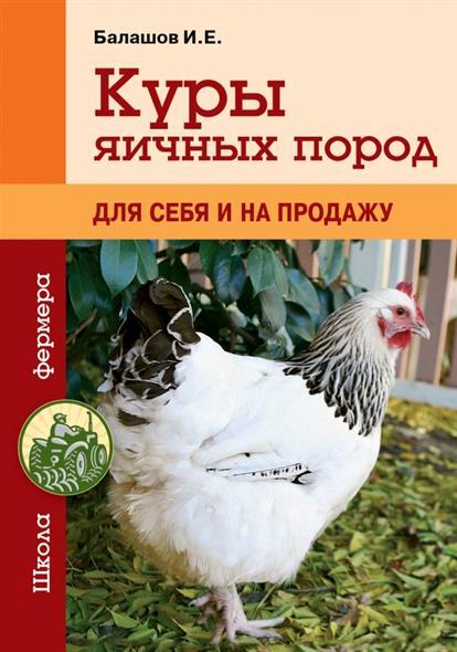 Куры яичных пород