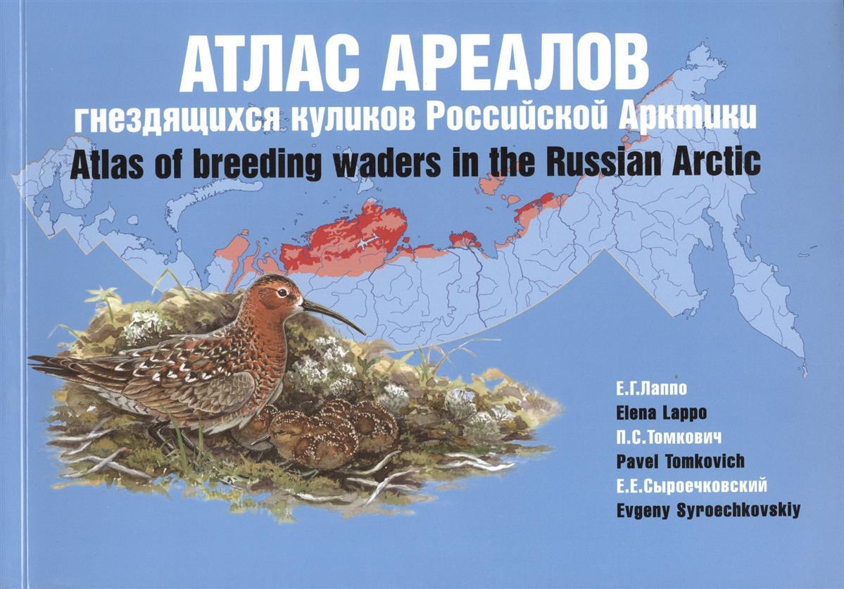Атлас ареалов гнездящихся куликов Российской Арктики = Atlas of breeding waders in the Russian Arctic