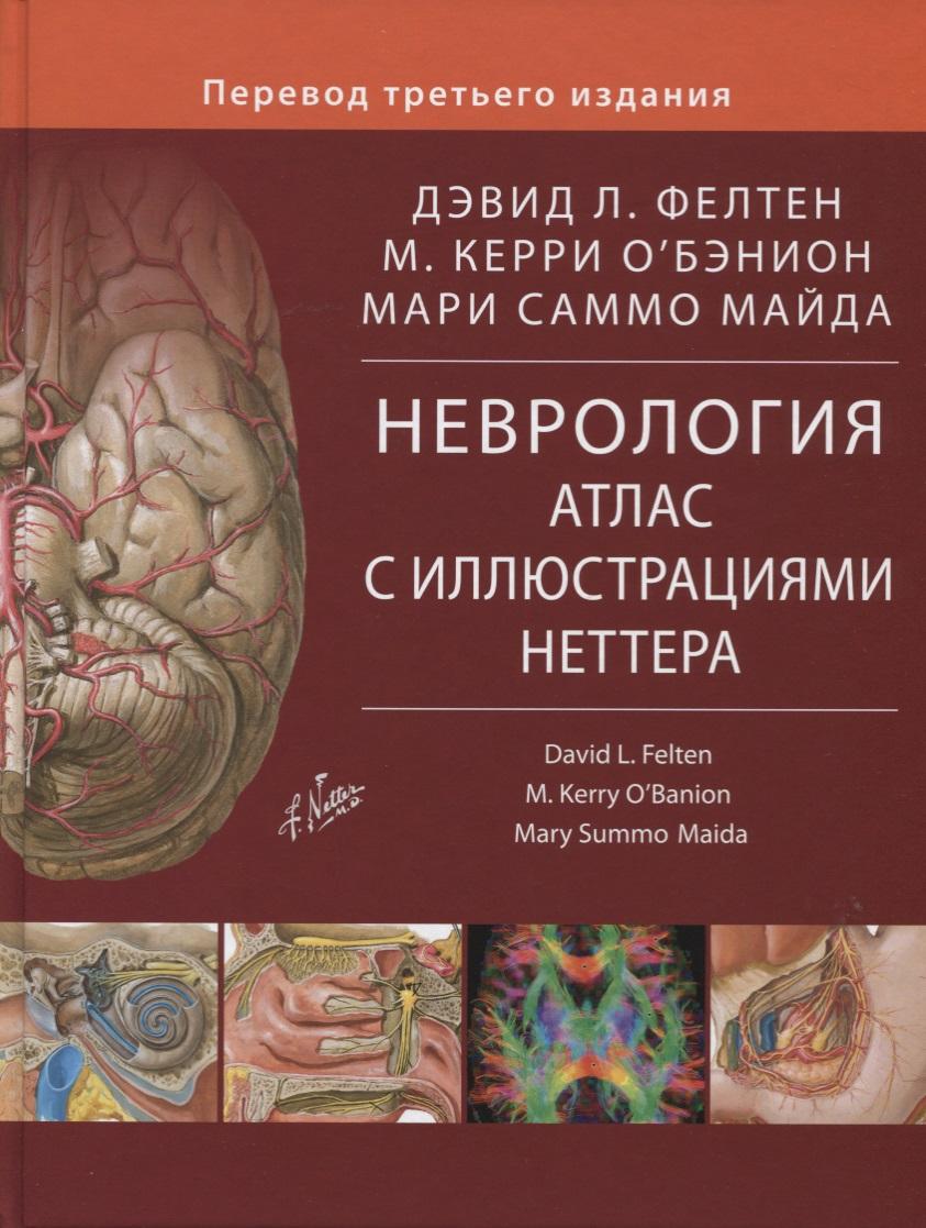 Фелтен Д., О`Бэнион М., Майда М. Неврология. Атлас с иллюстрациями Неттера в д рыжков современная парадигма в медицине позитивная неврология