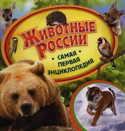 Шахова А. Животные России книги издательство сзкэо биэ животные россии