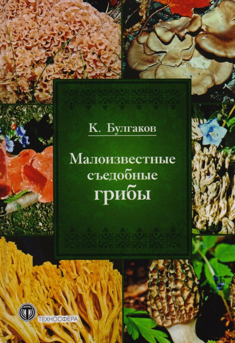 Малоизвестные съедобные грибы